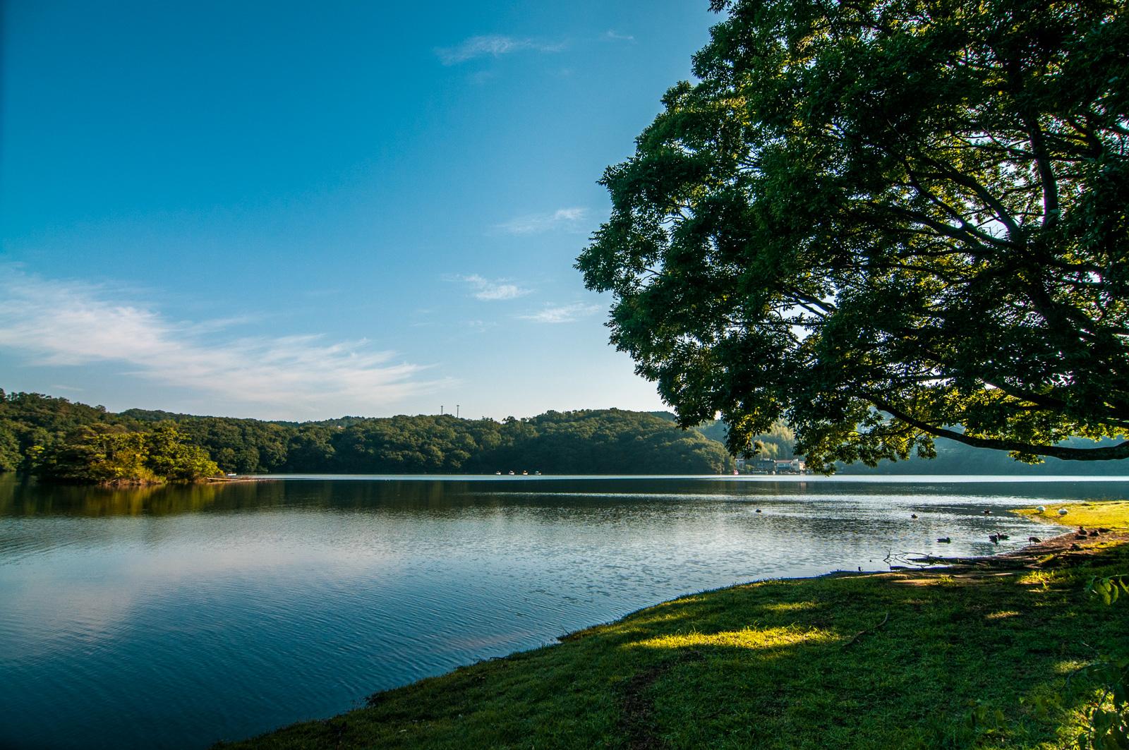 伊豆の瞳「一碧湖」で朝の澄んだ空気を撮影してみる
