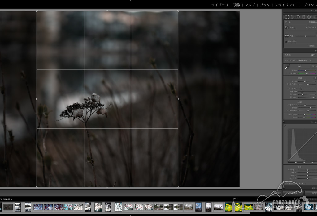 Lightroom/Instagram投稿に最適!横構図の写真を縦構図にトリミングする方法